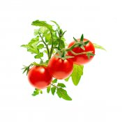 Click and Grow Smart Garden Refill 3-pack - Mini Tomato